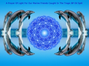 A Prayer Of Light For Our Marine Friends